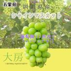 【贈答用】岡山県産 シャインマスカット  800g〜1キロ