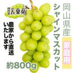 【家庭用】岡山県産 シャインマスカット 800g〜1キロ