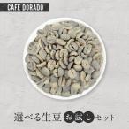 ポイント消化 【コーヒー生豆 全国送料無料】お試し フェアトレード 生豆 100g×2種 選べる セット