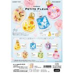 (予約)8/24発売 リーメント ポケモン Petite Fleur 全6種 1BOXでダブらず揃います