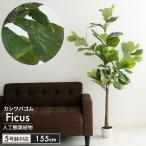 フィカス 人工 植物 高さ 155cm 5号鉢対応 鉢植え フェイクグリーン 観葉植物 カシワゴム 造花 オフィス 観葉 インテリア 室内 鉢 リビング