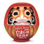 【メール便送料無料】ハナレグミ・So many tears / どこまでいくの実況録音145分(CD)(2枚組)(2014/1/2