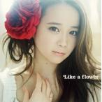 塩ノ谷早耶香 / Like a flower (CD+DVD)(2枚組)(2014/6/4)