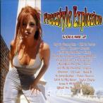 【メール便送料無料】VA / FREESTYLE EXPLOSION 2 (輸入盤CD)