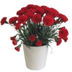 母の日 「カーネーションMサイズ -赤」 光触媒 造花 アートフラワー 鉢植えタイプ