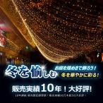 イルミネーション クリスマスイルミネーション 500球 30m LED電飾 イルミネーションライト 屋外 防水 看板照明 連結可 GOODGOODS ld55