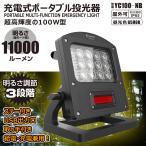 防犯灯 ナイター 屋内 屋外 LED 投光器 昼光色