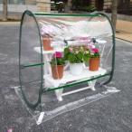 簡易温室 クリアーガーデンハウスSSS コンパクトドーム型