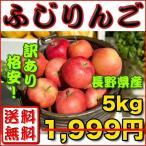 りんご 訳あり 約 5kg 長野県産 ふじりんご 送料無料 生食可 家庭用 お取り寄せ 沖縄・離島は別途送料