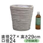 鉢カバー 白塗結束経木 プレーン 7号鉢用