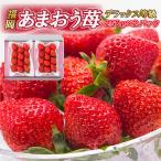 【送料無料】福岡県 あまおう苺 DX 秀品 デラックス等級 (250g×2パック) イチゴ いちご 果物 フルーツ 贈り物 プレンゼント 贈答 ギフト 自宅用 箱