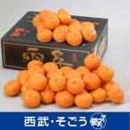 歳暮 百貨店 西武 フルーツギフト 旬 ミカン みかん 愛媛 日の丸みかん 5kg