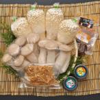 鳥取県産 きのこ詰め合わせギフト(大) 北村きのこ園 要冷蔵 他のメーカー商品との同梱不可