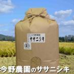 米 秋田県産 白米 【今野農園 ササニシキ 10kg】