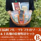(20日9:59まで5倍)日高村シュガートマトのソースと土佐畑の乾燥野菜セットB のし対応可