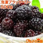 ブラックベリー 冷凍ブラックベリー 500g×1 冷凍フルーツ ヨナナス