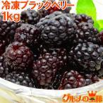 ブラックベリー 冷凍ブラックベリー 1kg 500g×2 冷凍フルーツ ヨナナス