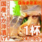 特大国産真いかの沖漬け 1杯×5パック (いか イカ 烏賊)