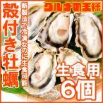 生牡蠣 殻付き 生食用カキ 生牡蠣 6個入り 冷凍殻付き牡蠣 生食用 新製法で冷凍なのに生食可能な殻付き牡蠣で濃厚な風味