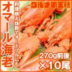 オマール海老 ロブスター 10尾 (BBQ バーベキュー)