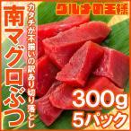 (訳あり わけあり ワケあり)まぐろぶつ 南まぐろ ミナミマグロ 赤身 切り落とし 300g×5パック 合計1.5kg(南まぐろ 南マグロ 南鮪 インドまぐろ 刺身)