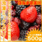 ミックスベリー 冷凍ミックスベリー 500g×1 冷凍フルーツ ヨナナス