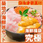 築地の海鮮丼セット(究極・約2杯分)本マグロ大トロ特盛り200g&無添加生うに&北海道産イクラ&王様のネギトロ
