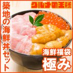築地の海鮮丼セット(極み・約2杯分)本マグロ大トロ特盛り200g&無添加生うに&北海道産イクラ