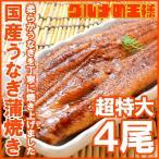 超特大 国産うなぎ蒲焼き 平均250g前後×4尾 タレ付き (国産 うなぎ ウナギ 鰻)
