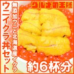 Salmon Roe - 築地市場のウニイクラ丼セット(6杯分・無添加生ウニ300g&いくら醤油漬け300g)海鮮丼で約6杯分