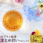 リプトン紅茶 まとめ買いプロジェクト9種類から選べる3個セット/珈琲 紅茶 加藤珈琲店