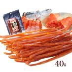 鮭とば 北海道 やん衆どすこほい 鮭とば明太スティック40g メール便 送料無料 簡易包装 トバ シャケ 珍味