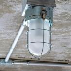 照明 ライト 1灯 シーリングライト SELKIRK セルカーク スポットライト ダウンライト おしゃれ 照明器具