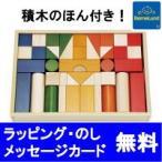 ボーネルンド (BorneLund) オリジナル積み木(つみき) カラー 木のおもちゃ/知育玩具/つみき/積木/出産祝いボーネルンド積木 ボーネルンド積み木