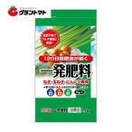 一発肥料 1kg ねぎ・玉ねぎ・にんにく専用 22-12-11-2 セントラルグリーン