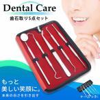 歯垢取り 5点セット スケーラー 除去 器具 自宅用 歯石になる前に自分で取る ヤニとり ステンレス製 先極細 デンタルツール しこう取り