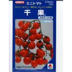 タキイ交配・・・千果・・・<タキイ種苗のミニトマト品種です。 種のことならお任せグリーンデポ>