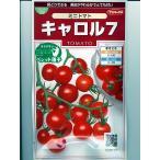 トマト サカタ交配・・・キャロル7・・・<サカタのミニトマトです。種のことならお任せグリーンデポ>