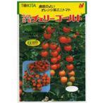 ミニトマト種 トキタ交配・・・チェリーゴールド・・・