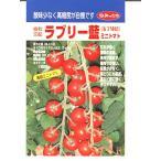 ミニトマト 協和交配・・・ラブリー藍・・・<協和のミニトマトの種です。種のことならお任せグリーンデポ>