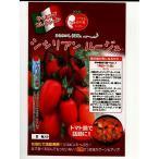 シシリアン ルージュ  パイオニアエコサイエンスの中玉トマト種子です
