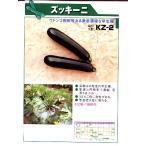 ズッキーニの種 KZ−2      みかど協和のズッキーニ種子です。種のことならグリーンデポ>