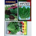 サラダ用野菜の種セット