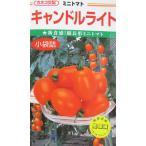 ミニトマト種 カネコ交配 キャンドルライト