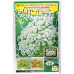 ダイヤ交配 カリフローレ トキタ種苗のスティックカリフラワー品種です
