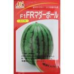 FRマダーボールスイカ  みかど協和の小玉スイカ品種です。画像
