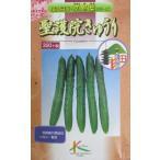 胡瓜種 聖護院きゅうり タカヤマシードの京野菜シリーズのキュウリ種です。