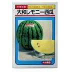 野菜種 スイカ 大和レモニー西瓜 7粒 大和農園