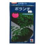野菜種 台木 ボランチ 50粒(トマト用)タキイ交配