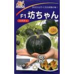 野菜種 かぼちゃ 坊ちゃん10粒 みかど協和交配